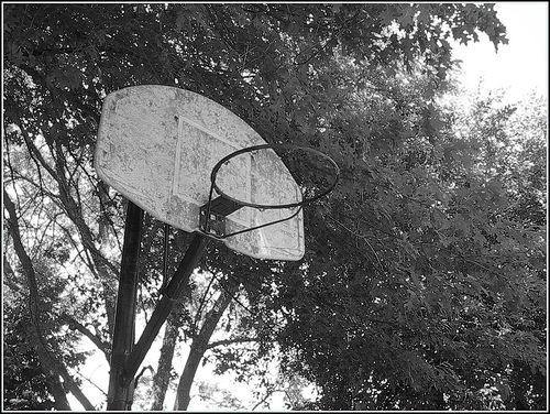 この画像は、サイトの記事「バスケ おじいちゃん YouTube 無料視聴 動画 お探しの方におすすめ!」のイメージ写真画像として利用しています。
